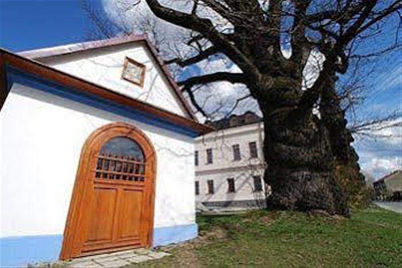 Отель Adámkova Vila
