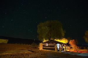 Отель 1000 Nights Camp